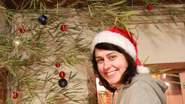 EVS Christmas tree